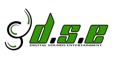 DIGITAL SOUNDS ENTERTAINMENT