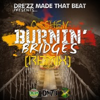 O-shen Burnin' Bridges DMTB Remix Album Art