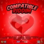 Compatible Riddim (Zj Heno)