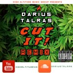 Art Cover - Darius Talras - Cut It Remix